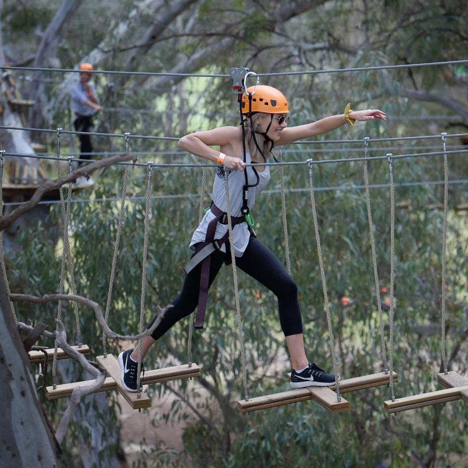 altus outdoor concept grand parcours aventure grand adventure course web